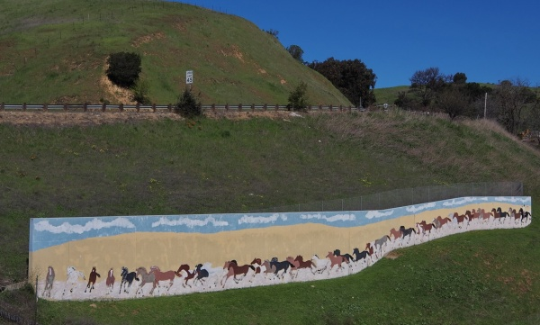 Horse Mural